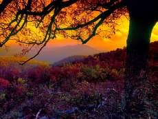 még tart az ősz gyönyörködjünk benne 2
