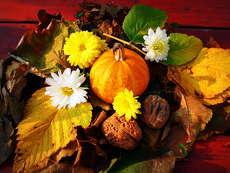 még tart az ősz gyönyörködjünk benne 4