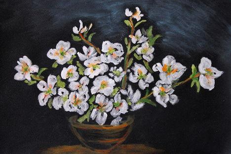 IMG_3776  Egzotikus virágok