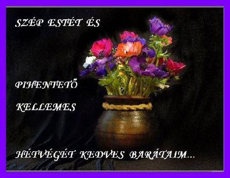 szép estét kívánok