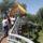 Makói lombkorona-sétány