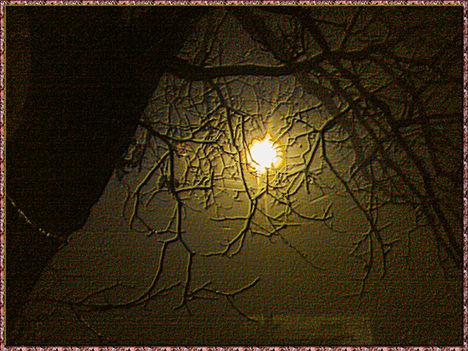 2013-11-18-öszi-köd