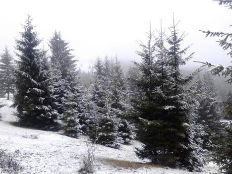Az első havas képek