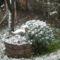 Első hó esés 2013. Nov 25.