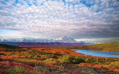 Daniel Nemzeti Park, Alaska