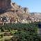 Socotra – A furcsa növények szigete + állatok...