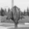 _MG_769620131211 városliget-1