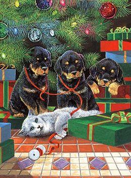 Boldog Karácsonyt !