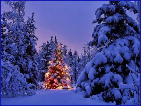 Karácsony ...