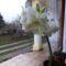 Virág Ünnepekre...