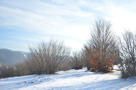 Balán-havasok