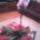 Viragzo_orchidea_1788253_1367_t