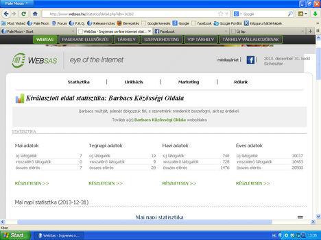 WebSas statisztika a 2013-as nézettségről