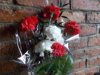 A virágaim ...