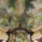 Mátraverebély -Szentkút A Szentháromságszobor