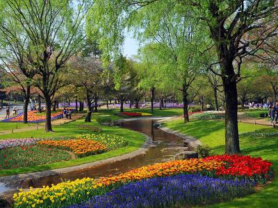 tavaszi kép 3