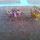 Drot_gyuru-004_1791021_9491_t