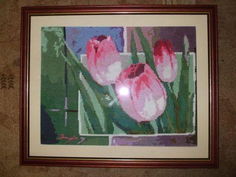 Szamosközi - Tulipánok II