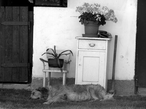 Autentikus pihenő
