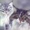 Aquarell kép macskákról