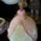 Barbi tortám az unokám születésnapjára