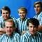 Beach Boys (4)