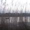 Kerék-tó, 2014. február