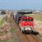 Az orosházi tehervonatok leggyakrabban Békéscsabán át közlekednek, az LTE gabonavonata azonban szombaton Szarvason át érte el célállomását (Fotók Vörös Csaba)