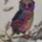 magic owl :)