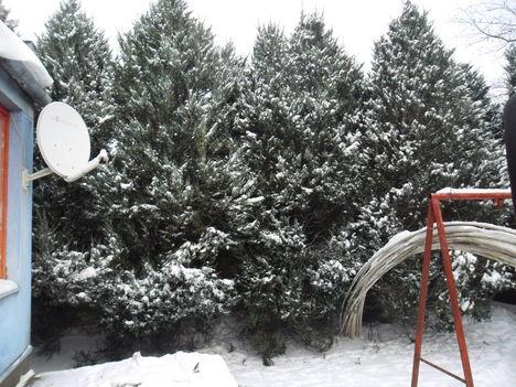 A hó az úr 1