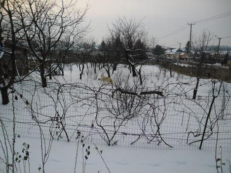 A hó az úr 2