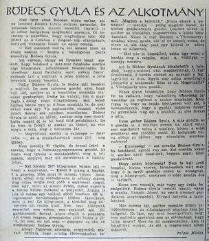 Bödecs Gyula és az Alkotmány, 1953.08.09.7.o.