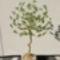 Tavaszi zöldfa