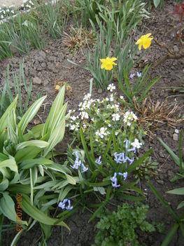 Kis kertjeimből. 4