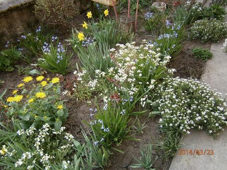 Kis kertjeimből. 8