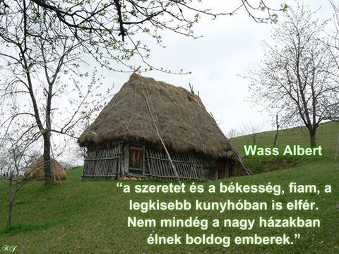 wass albert idézetek szeretet Vers: Wass Albert: