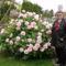 Bánfalvi úti virágok,Irénke kertjéből