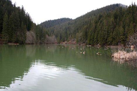 Békás szoros, Gyilkos tó 8