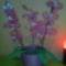 IMG_20140214_072146