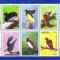 Paradicsom madarak