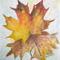 Őszi falavelek - Németh Mária