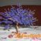 Göngyfa kékség