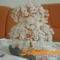 Gyöngyfa fehér csillámos