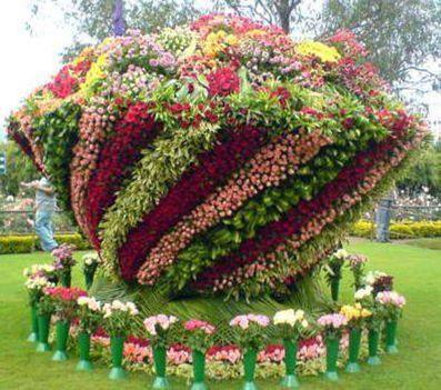 1969241_687968077929312_1955035320_n virágok