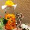 Körömvirág olaj készítés otthon