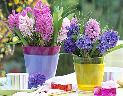 Csodás tavaszi virágok
