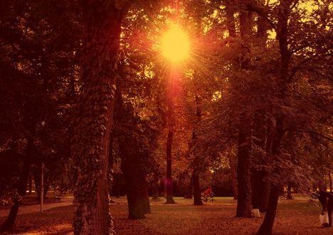 Napfényben 7