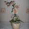 Orchidea Etelkának