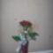 padl rózsa