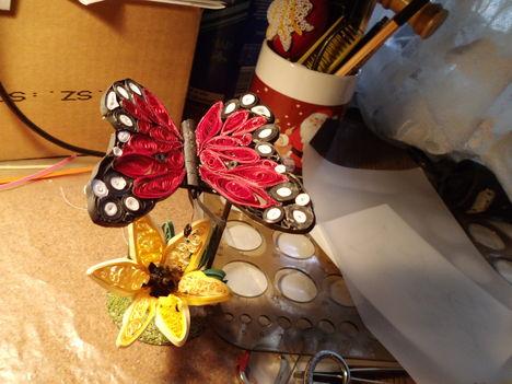 """A """"mühely"""" asztalára szállt egy pillangó"""